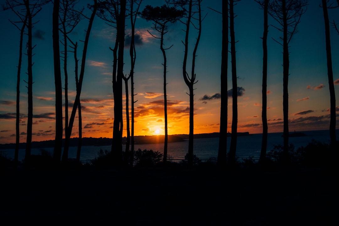 surftolive_surfculture_sunset