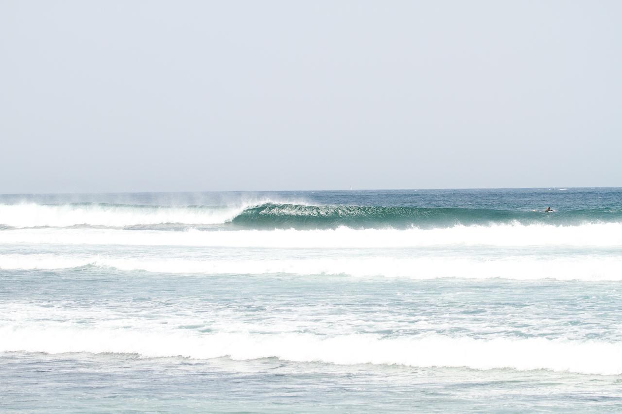 onde_fuerteventura_surfculture_surftolive-843